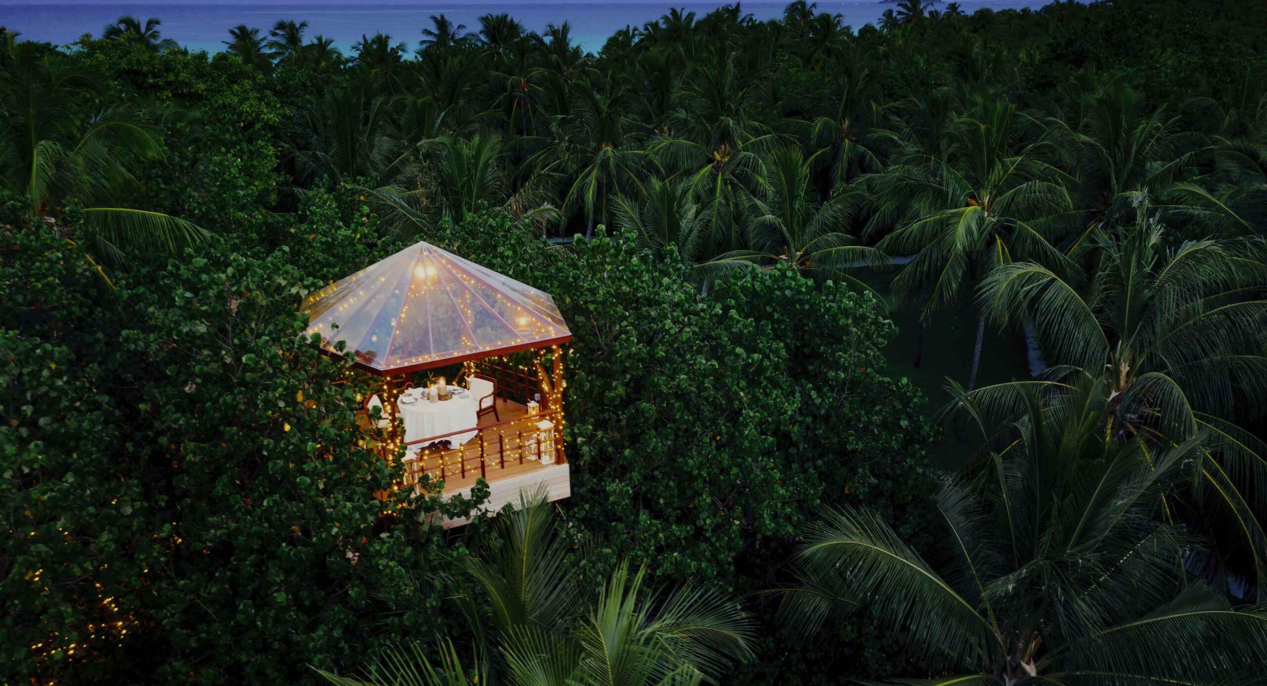 Resort_TreeHouse